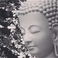 Kadampa Meditation Centre Aberdeen  logo