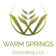 Warm Springs Consulting and the Sun Valley Institute logo
