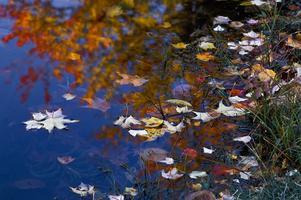 Cape Breton Fall Colours All Inclusive Photography...