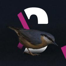 Direction Culture, Université de Lille logo