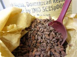 Chocolate Workshop Tour
