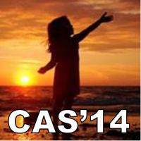 CAS'14 Wellington 2pm Session