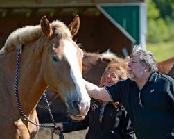 Apple Computer Co-Founder hosts Peaceful Acres Horses...