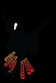 Margaret River Camera Club logo