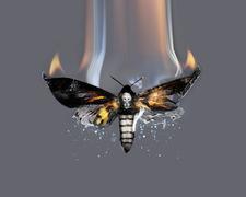 Sarabande: The Lee Alexander McQueen Foundation logo