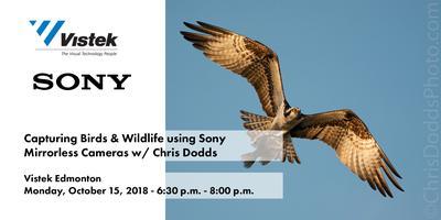 Capturing Birds & Wildlife using Sony Mirrorless...
