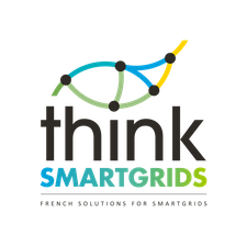 Think Smartgrids logo