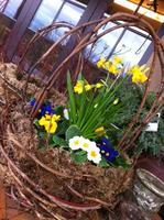 Moss, Twig & Flower Basket Class