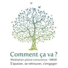Stéphane Nau - Instructeur MBSR à Lille et à Bruxelles (Center for Mindfulness, Massachusetts University of Medicine) logo