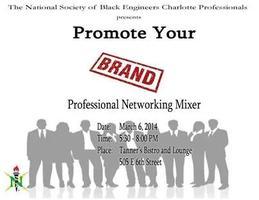 NSBE Charlotte Professionals Professional Networking Mi...
