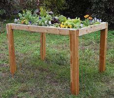Edible Gardening: Growing a Salad Table