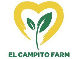 El Campito Loves Baja Wine Country!
