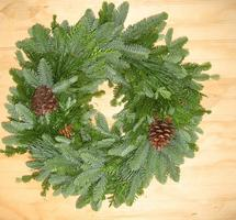 Fresh Green Wreath Making Workshop-1 evening