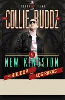 Collie Buddz & New Kingston at Wonder Ballroom