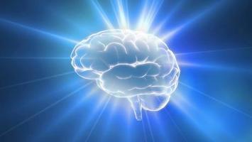 Higher Brain Living Presentation - Los Angeles