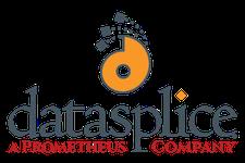 DataSplice logo