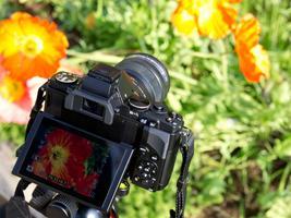 Capturing Flowers Workshop