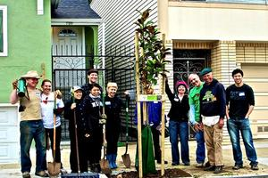 Monthly Gathering: The Future of our Urban Forest:...