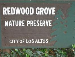 Redwood Grove Workday - 11/10