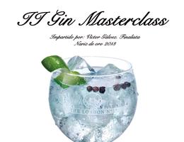 II Gin Masterclass