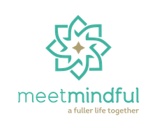 how much does meetmindful cost
