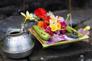 Fill Your Temple with Love in Bali Tour with Velva Dawn