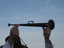Penzance May Horns 2014