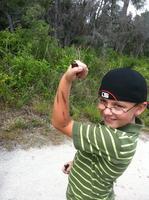 Scrub Jay Jr. Ranger Camp - Week 3 Habitats & Fire -...