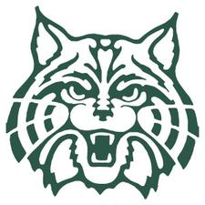 Plainfield Central High School logo