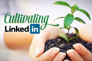Cultivating LinkedIn