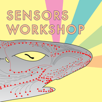 Sensors Workshop