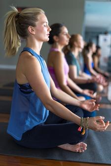 Australian School of Meditation & Yoga logo