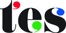 TES Global Limited logo