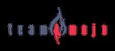 Team Mojo logo