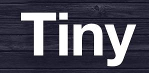 Tiny Startup Camp