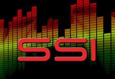 SSI INC logo