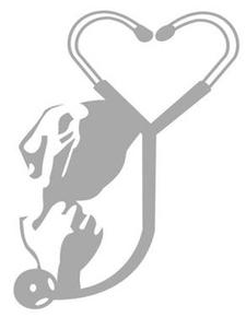 Mentoring in Medicine, Inc. logo