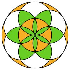 Colorado Springs' Organic Living Chiropractic logo
