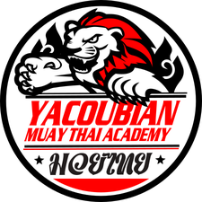 YMT Fight Promotions logo