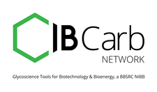 IBCarb  logo
