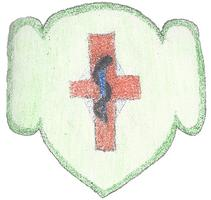 Girl Scout First Aid Badge Event