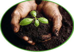 10th Annual Soil Health Symposium
