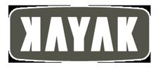 KAYAK Online Marketing logo