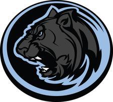Panther Training, LLC logo
