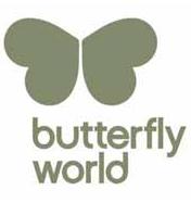 Popdance Kids at Butterfly World