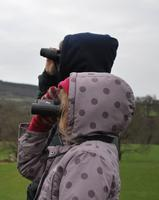 Easter Family Birdwatch at Tegg's Nose Country Park