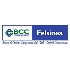 Bcc Felsinea logo