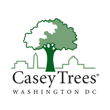 Casey Trees logo