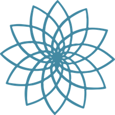 Clarity & Insight logo