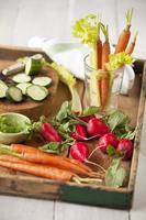 Organic Produce Tasting